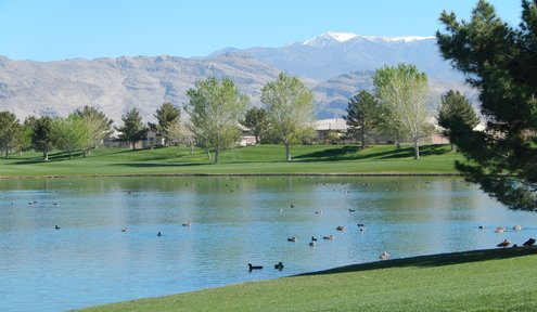 Award Winning Golf in Pahrump